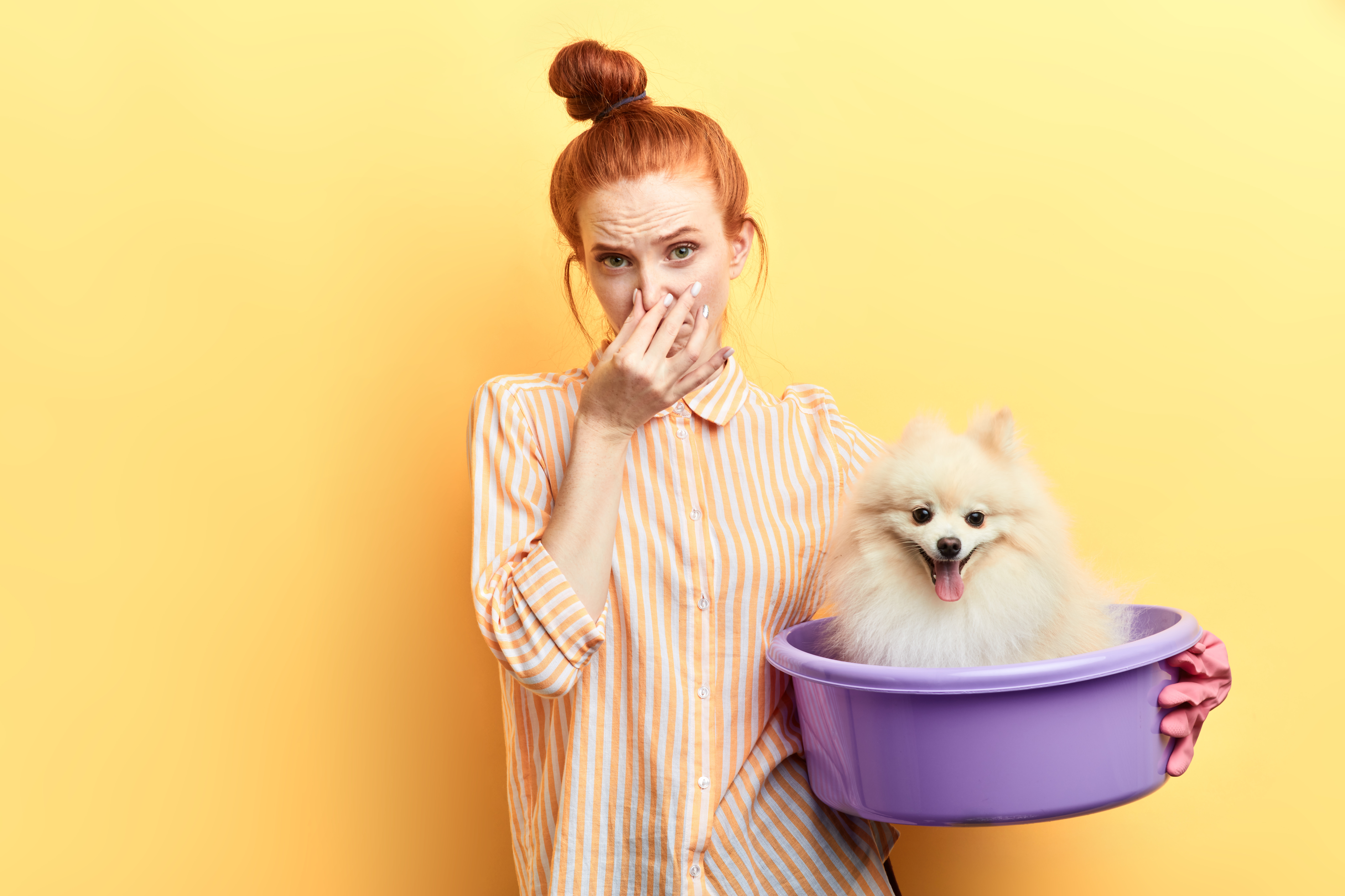 Do Air Purifiers Work for Pet Odor?